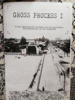 Gross Process I